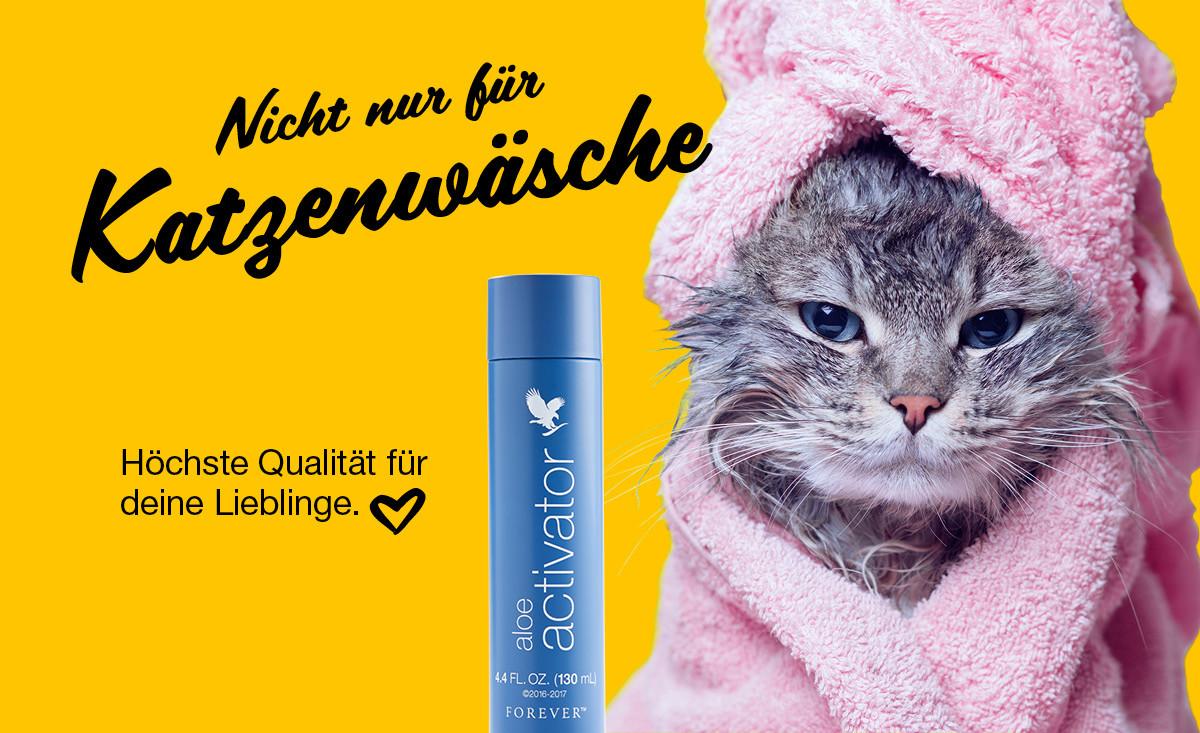 Nicht nur für Katzenwäsche.