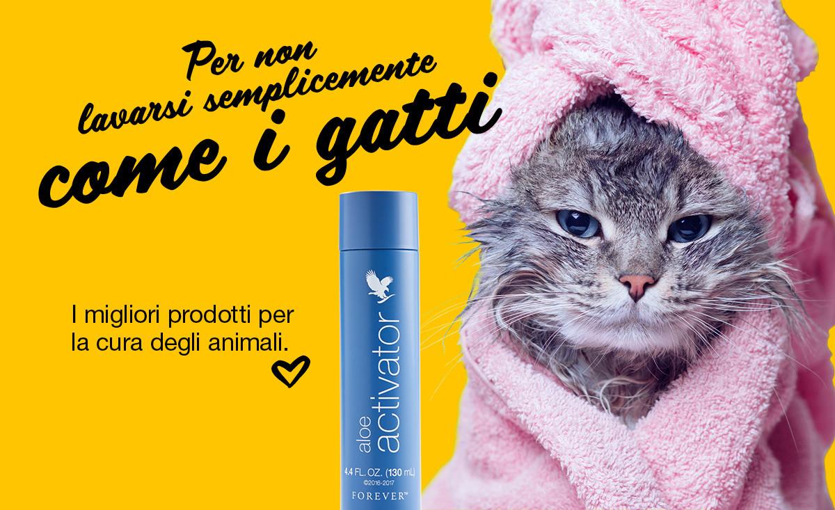 Per non lavarsi semplicemente come i gatti.
